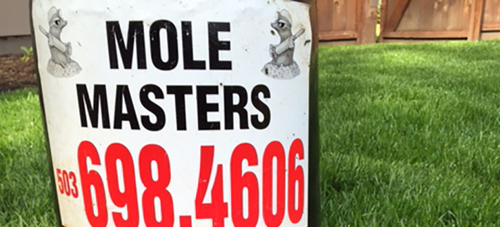 Contact Mole Masters for your mole trapping or no-poison extermination services.